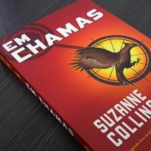 Em Chamas, o livro